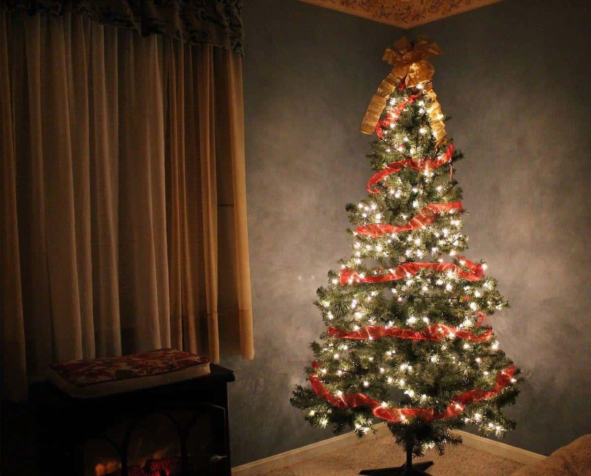 ozdobione lampkami drzewko choinkowe